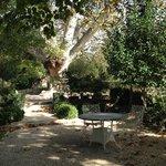 Autumnal garden outside Le Manoir