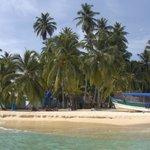 Foto de Dolphin Lodge Uaguinega