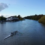 Thames River kayaking