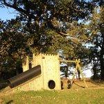 صورة فوتوغرافية لـ Tantara Woodland Lodges