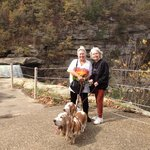 There are wonderful dog friendly walking paths all around the falls!