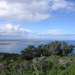 Looking towards The Catlins from the summit of the hill.
