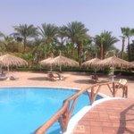 Pool and sunshades