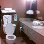 Upscale-looking bathroom.
