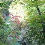 紅葉と渓谷