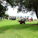 Waipu Cove reserve
