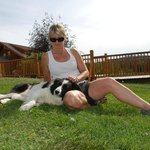 border collie massage