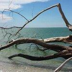 beach off stump pass