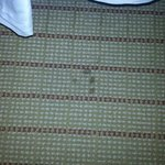 carpet stain in worn room