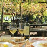 Our picnic with wine produced in the vineyard