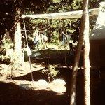 Nash Fork Campground , snowy range, 1976