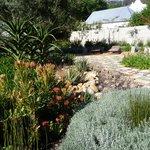 Forsetzung Garten
