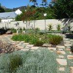 Neu angelegter Garten hinter dem Haus