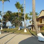 parte del parco vicino alla spiaggia (80040259)