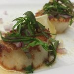 Pan-Seared Scallop Special