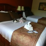 Nice comfy beds and the artistic towel folding. Sorry bear and hippo not included