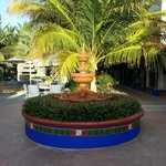 Courtyard oasis at hacienda Paraiso