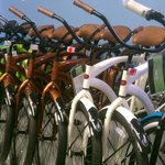 bikes of every kind !