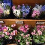Flores lindas no Reading Terminal Market