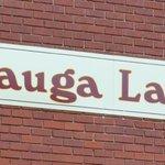 Watauga Lake Winery nearby