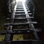 Ladder to Cenote / セノーテまでのはしご