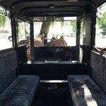 inside buggy