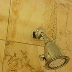 Loose metal ring around shower head