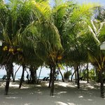 Cap Jean Marie Villas Beach