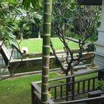 Verdant Gardens