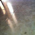 un grupo de hornigas disfruntando del suelo de mi habitacion de hotel