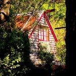 Foto de Arnica Views