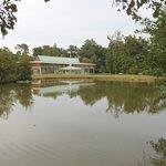 l'hotel, vue du parc