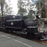 steam train at Menzies Creek Station