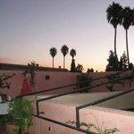 The roof terrace at sunset