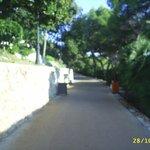 Coastal path running through complex