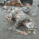 Malin Kundang stone