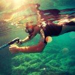 fond sous marins magnifique