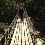 Rope Bridge across creek
