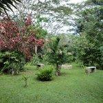 beautiful natural grounds
