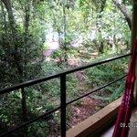 Vista desde el balcon de la habitacion