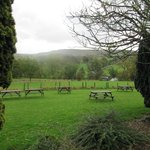 The view to the fells from The Inn