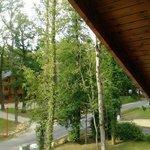 Vu sur le pin Sylvestre 1 sur le pin Sylvestre 2