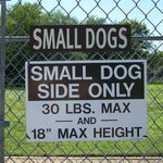 Small dog section - - Tails and Trails dog park