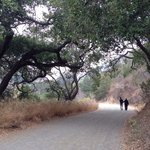 A trail suitable for bikes, hikers, and horseback