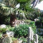 giardino che circonda tutto l'hotel ..bellissimo