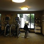 cardio equipment in the gym
