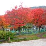 道の駅虹の湖公園①