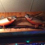 Interior decoration, stuffed trout,West Wok  |   West Hawk Lake, Manitoba