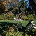 Jim's garden