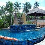 Seasalt-treated Swimming Pool